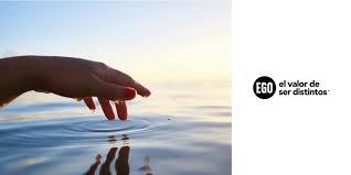 Certificación de Carbonocero para Agencia EGO, junto con Reforestarg